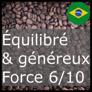 Brésil force 6/10
