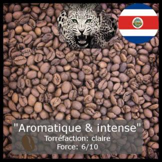 Costa Rica El Jaguar